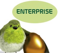 Enterprise-bundel